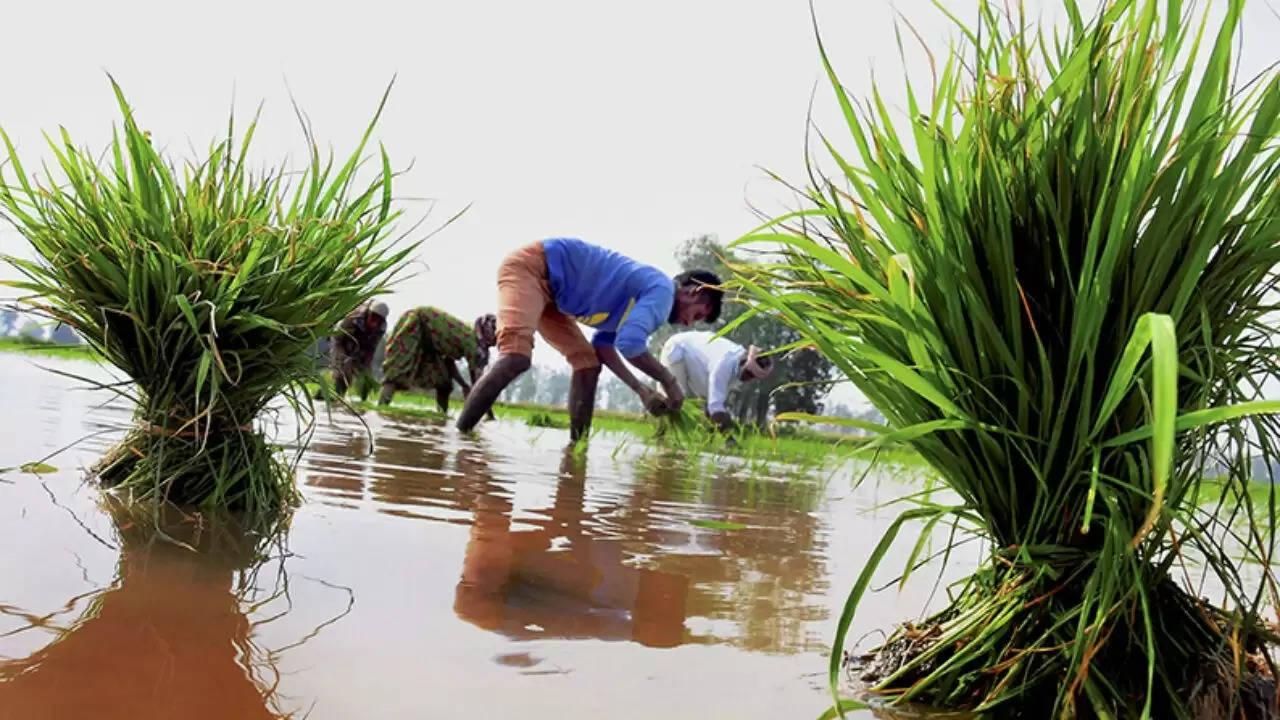 கிசான் முறைகேடு: காஞ்சிபுரம் மாவட்டத்தில் ரூ.78 லட்சம் பறிமுதல்!